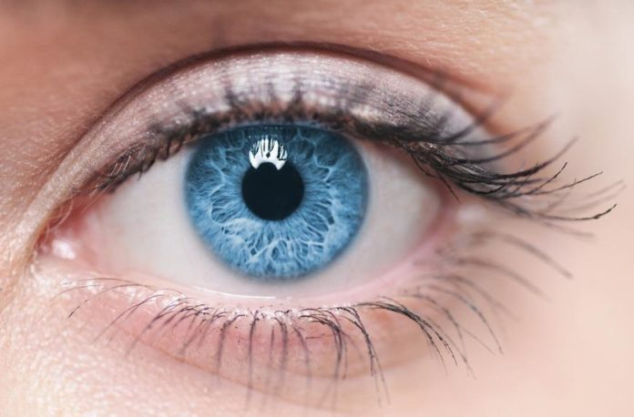 lutenea z liteiną na poprawę wzroku